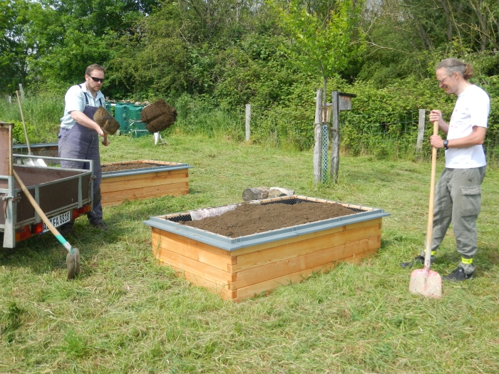 Schaufel für Schaufel werden die Hochbeete gefüllt!